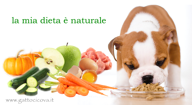 Alimentazione naturale cane