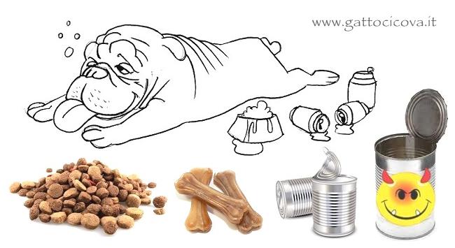 Gastrite Cane