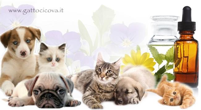 Cure Naturali Integrate per Cani e Gatti