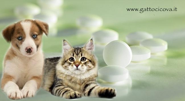 Glucosamina Cane Gatto