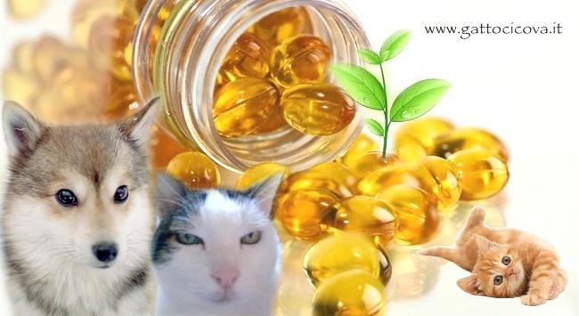Omega 3 per Gatto e Cane
