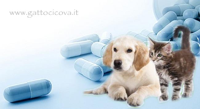 Lypex enzimi pancreatici cani gatti